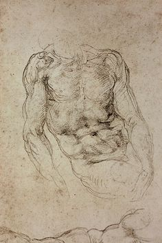 study by Michelangelo Male Figure Drawing, Fine Art Drawing, Figure Drawing Reference, Life Drawing, Michelangelo, Anatomy Sketches, Art Sketches, Art Drawings, Human Anatomy Drawing