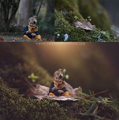 Photoshop Compositing Tutorial Videos By Stephanie Stafford It's Time To Go From Good To Great! The Photoshop Compositing Tutorial You've Been Waiting For… Photoshop Tutorial, Funcionalidades Do Photoshop, Photoshop For Photographers, Photoshop Photography, Creative Photography, Digital Photography, Photography Tips, Advanced Photography, Popular Photography