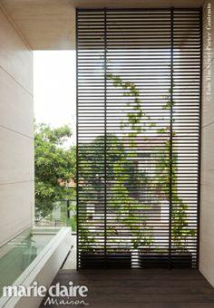 Una villa a Jakarta Las Vegas Homes, Foyer Design, Courtyard House, Backyard, Patio, Jakarta, Blinds, Partition Walls, Villa