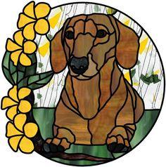 dachshund Teckel by Manon Cayer