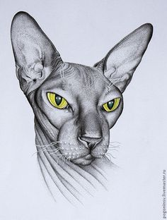 "Купить Картина ""Сфинкс"" - картина, графика, кот, кошка, акварель, тушь, животные, анималистика, бумага"