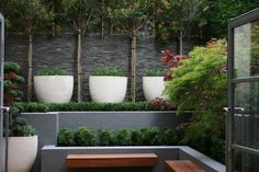 Contemporary small urban court yard in Holborn, London.The walls are dressed with one side stone cladding in slate and one wall is a 30m2 Verical 'Living' wall with one speciment planting for a stylish verical 'Lawn' effect. Calm & Collected Court Yard