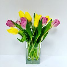 Mixed tulip vase, purple and yellow tulips in a rectangle vase. Spring arrangement
