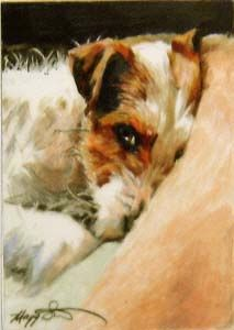 Jack Russell Terrier Dog Art ~ Wake Up Call by Maggie Stiefvater Fox Terriers, Wire Fox Terrier, Dog Artwork, Vintage Dog, Watercolor Animals, Dog Portraits, Animal Paintings, Beautiful Dogs, Love Art