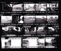 contact sheets photography - Google Search