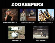 So You Want To Be A Zookeeper Amusement Jokes Funny - 20 hilarious photos of what zookeepers get up to after closing hours