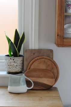Mother-in-law's tongue, snake plant, sansevieria at home   Gardenista