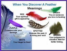 Feather meanings