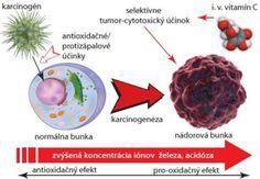vitaminC schema