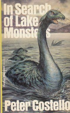 Fyny Gydar Swans (Welsh Edition)