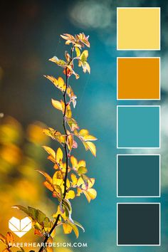 Color Palette: Fall Leaves Teals and warm tone color palettes. Color Palette: Fall Leaves Teals and warm tone color palettes. Color Schemes Colour Palettes, Fall Color Palette, Colour Pallette, Color Palate, Interior Colour Schemes, Rust Color Schemes, Bedroom Colour Schemes Warm, Colour Combinations Interior, Ocean Color Palette