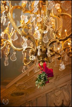 Wedding photographers Newport RI -Peter Silvia Photography: 12/13/14 Rosecliff Mansion Wedding Betsy and Steve.  A little touch of mistletoe!