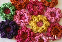 These are beautiful crochet flowers. Your can get directions on this website, http://www.skiptomylou.org/2012/09/06/crochet-flowers/