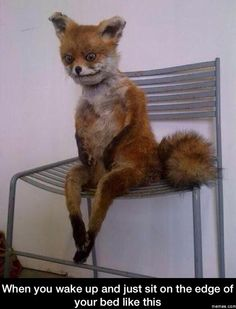 When you wake up and just sit on the edge of your bed
