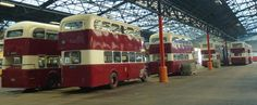 An Open Day held at Lothian Bus Depot