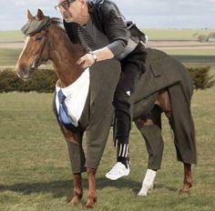 Black Heart, Horses, Animals, Animales, Animaux, Animal, Animais, Horse