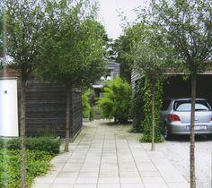 Träd och övrig levande lummighet viktigt för stora hårdgjorda ytor som infarter och parkeringar. Entrégång i avskiljande material markerar och bjuder in.