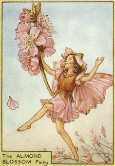 Almond Blossom Fairy from Flower Fairies of the Trees by Cicely Mary Barker