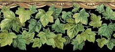http://www.theinspirationgallery.com/borders/ivy/bord_ivy_006.htm