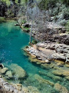 Fossil Springs (near Camp Verde). People come to Fossil Creek to sunbathe, wade, hike and birdwatch. It's also a great place to take photographs. The lushness of the riparian area strikes a sharp contrast to the brittle desert that surrounds it.