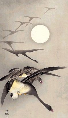 Ohara Koson - Eight White-fronted Geese in Flight; full Moon behind. The figures of the geese becoming clearer as they emerge from the fog is a neat way of showing motion. Japanese Artwork, Japanese Painting, Japanese Prints, Chinese Painting, Chinese Art, Art Canard, Ohara Koson, Art Chinois, Illustration Art