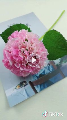 Hydrangea, do it yourself Crepe Paper Flowers Tutorial, Crepe Paper Roses, Paper Flowers Craft, Flower Crafts, Paper Crafts, Diy Lace Ribbon Flowers, Tissue Paper Flowers, Fabric Flowers, Paper Lotus