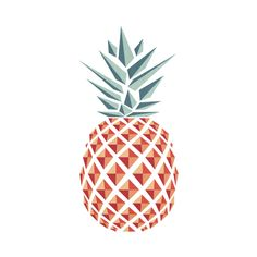 Images For > Pineapple Drawings Tumblr