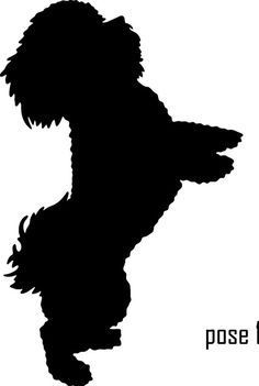 Image result for all white silhouette of standing small shih tzu