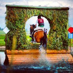 #horses    great shot!