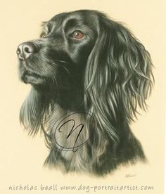 Beautiful pastel drawing