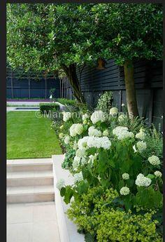 nice Black fencing, green and white garden design. Charlotte Rowe Garden Design...