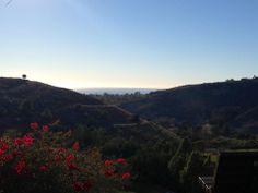 View of the Pacific, from a hillside park in Santa Barbara. — in Santa Barbara, CA.