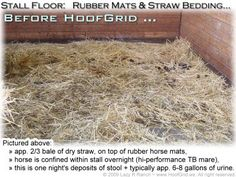 Rubber matted horse stall, before HoofGrid permeable stall flooring