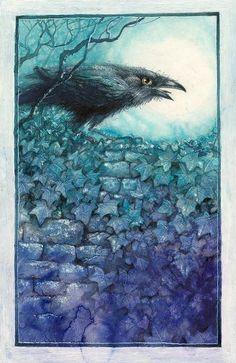 Pavel Čech Pet Raven, Raven Art, American Crow, Quoth The Raven, Book Illustration, Illustration Children, Jackdaw, Crows Ravens, Bee Art