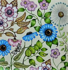 floresta encantada livro para colorir - Pesquisa Google