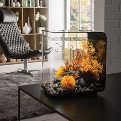 Order the BiOrb FLOW 30 Aquarium with LED for your home or office. Shop for desktop aquariums and other creative products at the Apollo Box. Biorb Aquarium, Aquarium Fish, Fish Aquarium Decorations, Small Fish Tanks, Cool Fish Tanks, Aquarium Design, Conception Aquarium, Aquariums, Fish Tank Themes