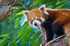 """""""Things are lovely over here."""" 