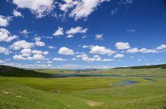 Valle De Hayden, Yellowstone, Valle, Paisaje, Verde