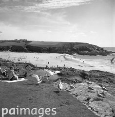 Picnicking holiday makers receiving the attentions of the seagulls at Treyarnon Bay in Cornwall. 19th July 1965