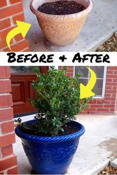 Budget Decorating Ideas - Transform Your Decor with Spray Paint - Clever DIY Ideas Decorating On A Dime, Apartment Decorating On A Budget, Diy Home Decor On A Budget, Easy Home Decor, Cheap Home Decor, Decorating Hacks, Porch Decorating, Apartment Ideas, Diy Projects To Sell