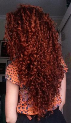 Projeto Along Hair – Recupere em 30 dias Cute Hairstyles For Teens, Cool Hairstyles, 3b Hair, Red Hair Blue Eyes, Red Curls, Corte Y Color, Beautiful Hair Color, Ginger Hair, Dyed Hair