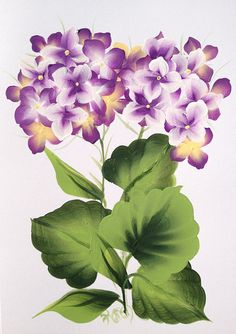 Hydrangea Hand Painted Greeting Card by KarenUnderwoodArt on Etsy, £4.50