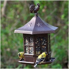 Avant Garden® Cupola Wild Bird Feeder.  This captivating building cupola bird feeder was inspired by early American architecture and will add to any patio, porch/deck or backyard. #cupola #birdfeeder #wildbirds