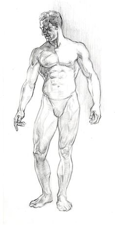 Exceptional Drawing The Human Figure Ideas. Staggering Drawing The Human Figure Ideas. Male Figure Drawing, Figure Sketching, Figure Drawing Reference, Human Figure Sketches, Anatomy Reference, Pose Reference, Human Anatomy Drawing, Body Drawing, Life Drawing
