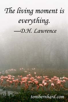 """The living moment is everything."" —D.H. Lawrence"