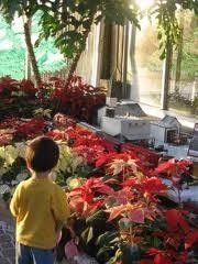Animal Hide and Seek Indianapolis, IN #Kids #Events