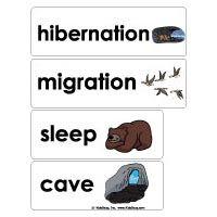 Animals in Winter Preschool Activities, Lessons, and Printables Preschool Word Walls, Preschool Themes, Preschool Writing, Preschool Class, Preschool Printables, Animals That Hibernate, Winter Words, Winter Activities, Preschool Winter