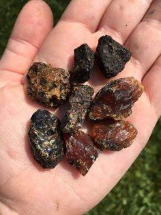 "Raw Amber Stone (rough) Listing is for 1 raw amber stone. - 2 Size options Small (~0.5"") and Medium (1"") Metaphysical Properties: Amber key words: light, warmth, solar energies, protection, clarificat"