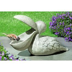 And a perfect refuge for finch… Birdbath Pelican – Exceptional garden decoration. And a perfect refuge for finches, tits & other birds. Clay Birds, Ceramic Birds, Ceramic Animals, Clay Animals, Ceramic Art, Ceramic Pottery, Clay Projects, Clay Crafts, Pottery Animals