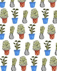 Potted Plants II.
